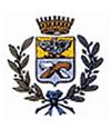 logo-comune di olginate